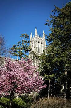 Duke University Chapel Spring