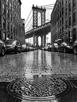 Dumbo In The Rain by Rand