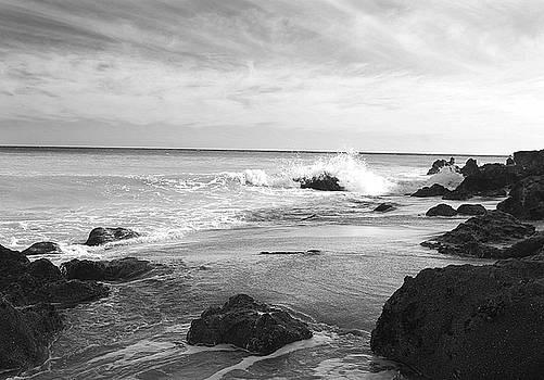 Dume Beach, California by Lori Hutchison