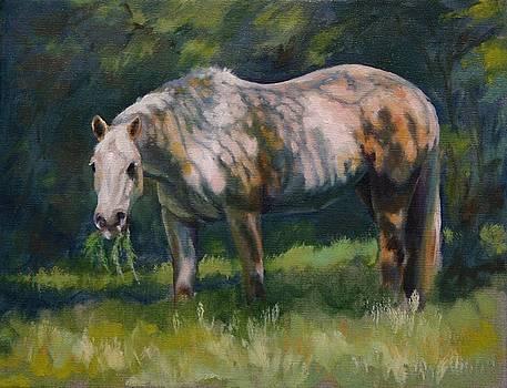 Duncan by Elaine Hurst