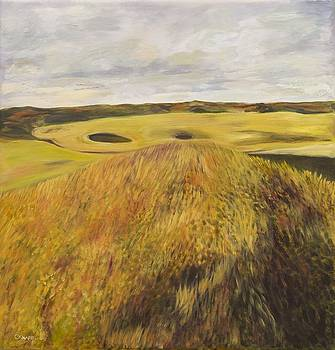 Dundonald Golf Course by Christina Knapp