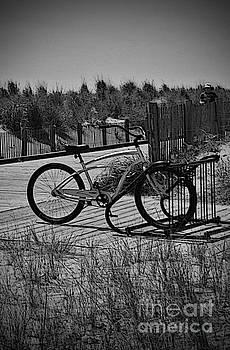 Jost Houk - Dune bike