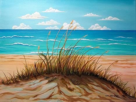 Dune by the Seashore by Carol Sabo