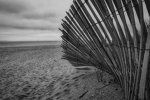 Dune Fence by Todd Dunham