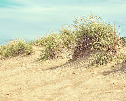Dune Grass by Emily Kay