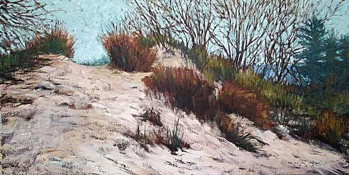 Dune Hill by Dale Knaak