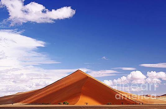 Dune in the Namib desert, Namibia by Wibke W