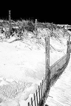 John Rizzuto - Dune Protection at Long Beach Island
