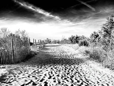 John Rizzuto - Dune Shadows at Harvey Cedars on Long Beach Island