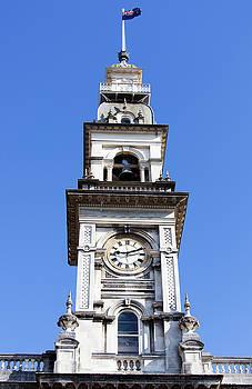 Ramunas Bruzas - Dunedin City Clock