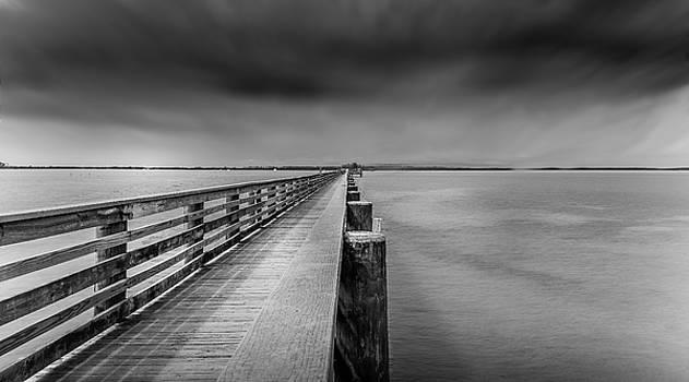 Dunedin Pier by Todd Rogers