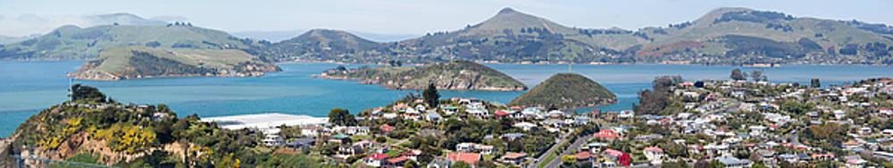 Ramunas Bruzas - Dunedin Suburb Panorama