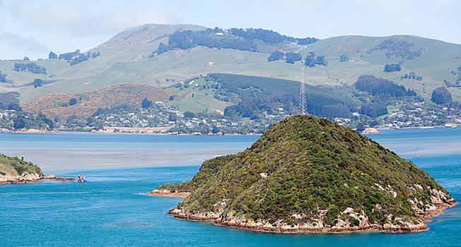 Ramunas Bruzas - Dunedin City Suburbs