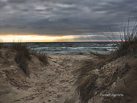 Dunes Along Lake Michigan in Ludington by Dick Bourgault
