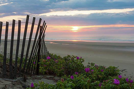Dunes at Ogunquit by Susan Schmidt