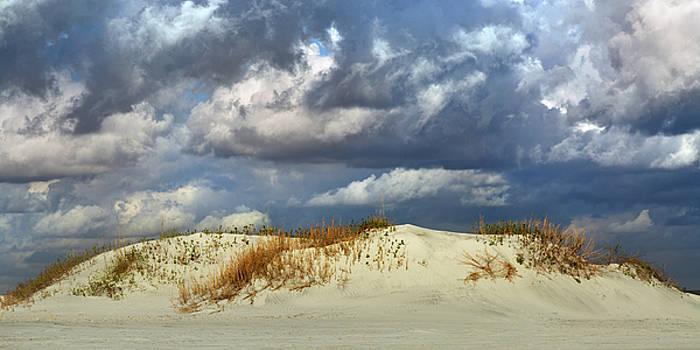 Dunes Day  by Betsy Knapp