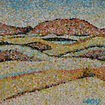 Dunes by Denise Landis