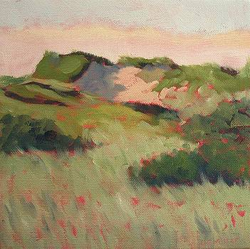 Dunes in Pink by Laurie G Miller