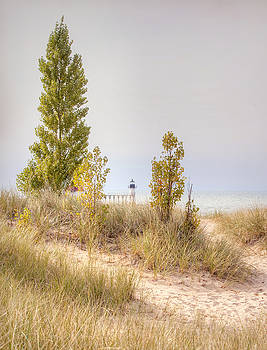 Dunes in the Fall by Laura Greene