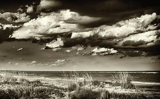 Dunes by Joe Shrader