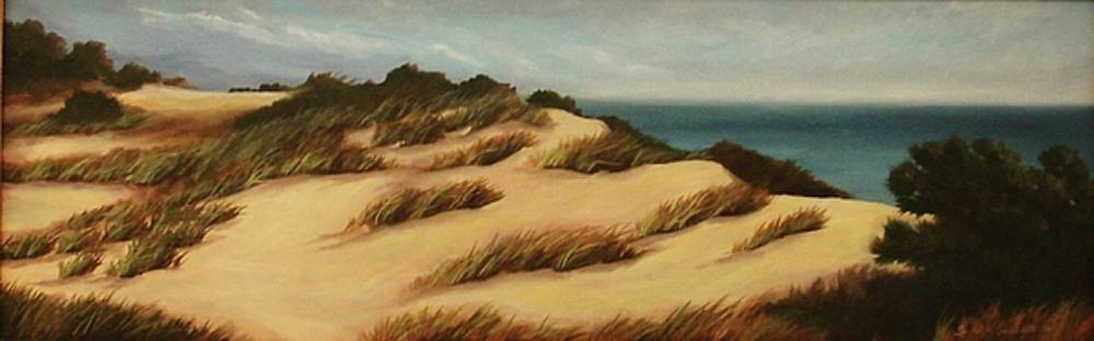 Dunes of South Hampton by Sarah Grangier