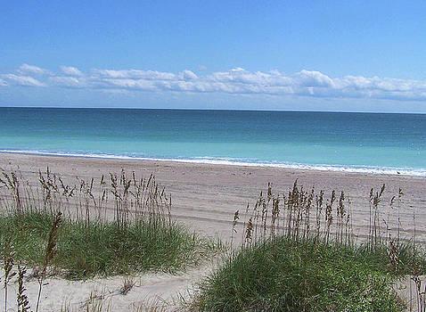 Sandi OReilly - Dunes On The Outerbanks
