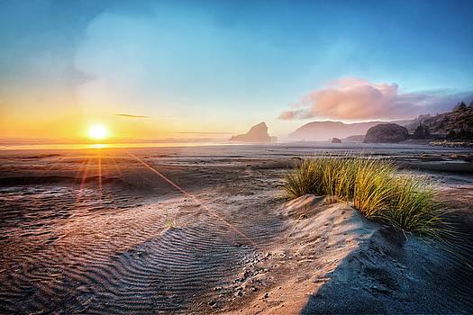 Debra and Dave Vanderlaan - Dunes on The Pacific Coastline