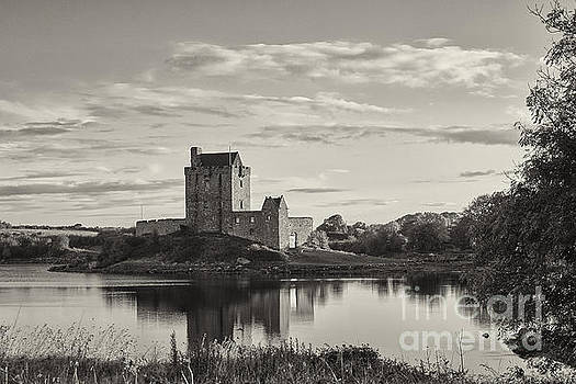 Dunguaire Castle by Juergen Klust