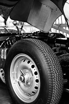Dunlops On by Robert Phelan