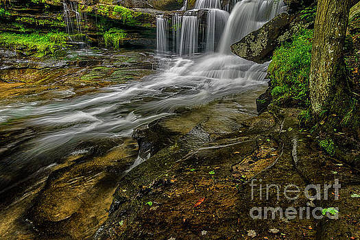 Dunloup Creek Falls by Thomas R Fletcher