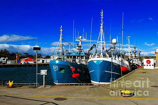 Dunmore East Harbour by Joe Cashin