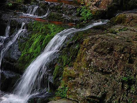 Dunnfield Creek Falls 2 by Raymond Salani III