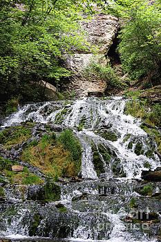 Dunning's Springs Waterfall Decorah Iowa  by Kari Yearous