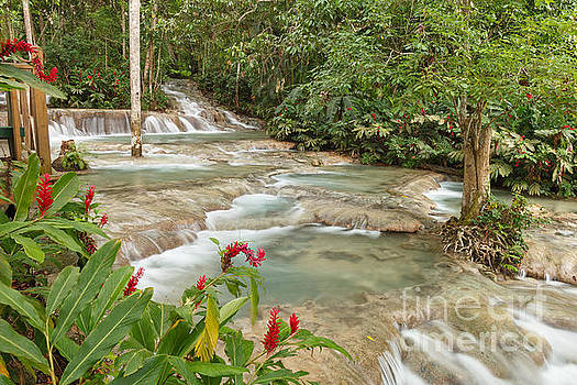 Dunn's River Falls by Charles Kozierok