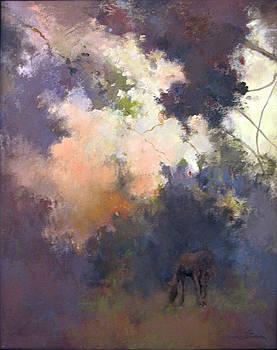 Dusk by Anne Lattimore