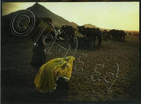 Dusk At Pushkar by Vinod Dave