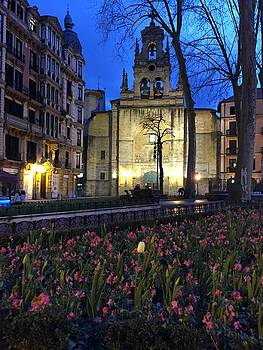 Dusk In Bilbao by Rosemary Nagorner