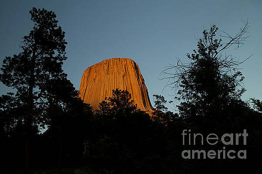 Dusk on Devil's Tower by Natural Focal Point Photography