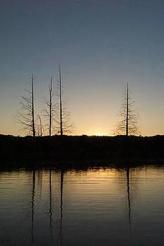 Dusk On Sage Lake by Michael Peychich