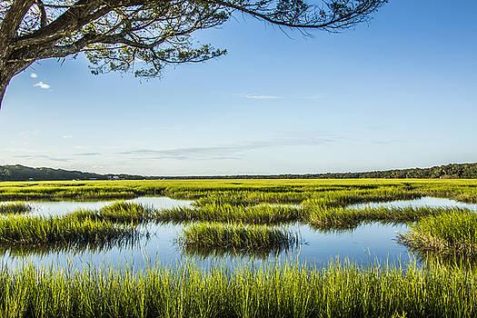 Paula Porterfield-Izzo - Dusk on The Marsh
