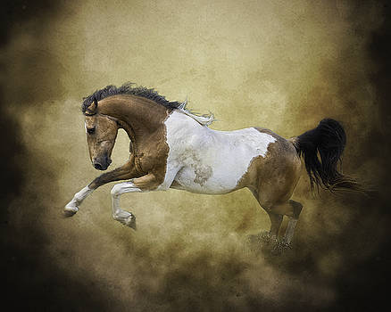 Dust Dancer by Ron  McGinnis