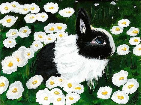 Dutch Bunny with Daisies by Monica Resinger
