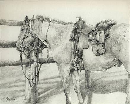 Dutch Creek Appy by Margi Greene