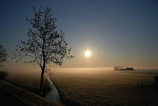 Dutch Farm at Dawn by Hans Kool