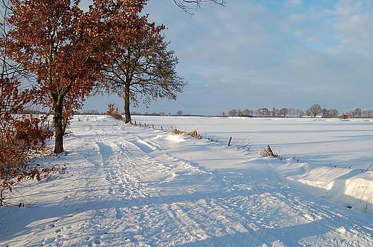 Dutch snow by Jos Van de Venne