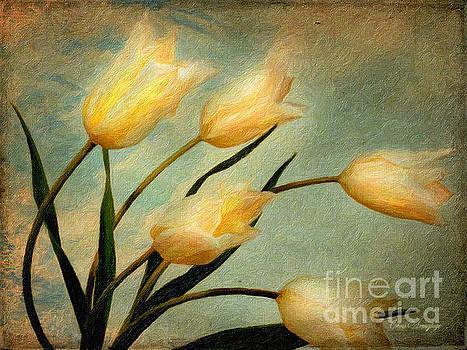 Dutch Tulips by Chris Armytage