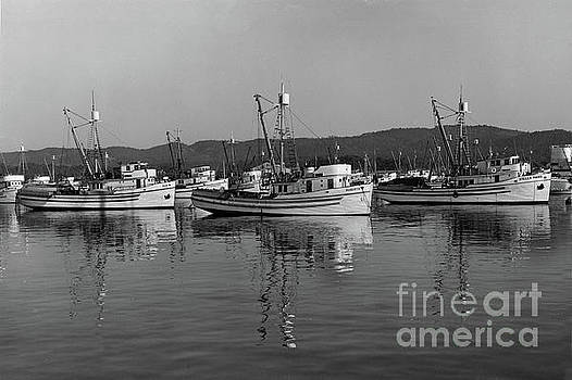 Dux, Robert B, Stella Maris Purse Seiners at Monterey circa 1950 by California Views Mr Pat Hathaway Archives