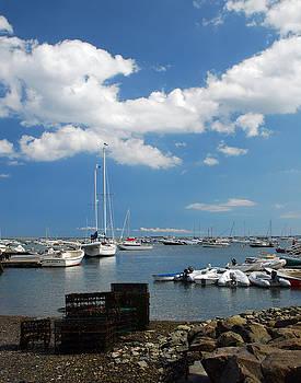 Duxbury Harbor by Mark Wiley