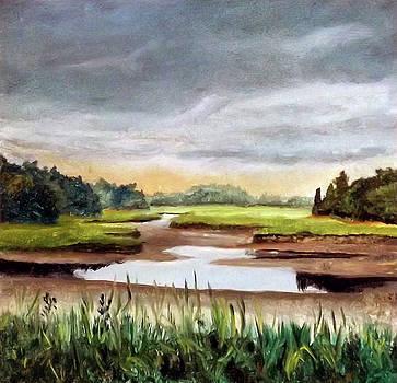 Duxbury Marsh # 2 by Robert Harvey