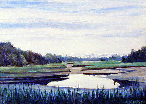 Duxbury Marsh by Robert Harvey